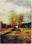 beata bieniak trees, digital art